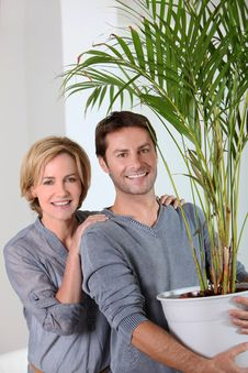 Free Husband Carrying Plant Stock Photos - 20430843