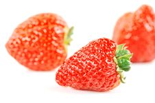 Free Strawberries Royalty Free Stock Images - 20431119