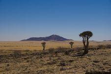 Free Desert Namibia Royalty Free Stock Image - 20431226
