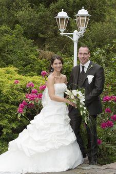 Free Wedding Stock Photo - 20431240