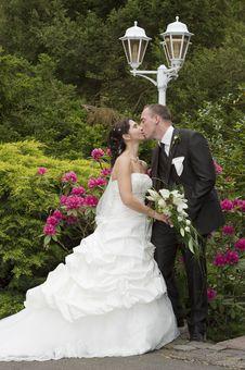 Free Wedding Royalty Free Stock Photo - 20431265