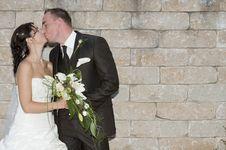 Free Wedding Stock Photo - 20431310