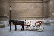 Free Cathedral And Carriage Royalty Free Stock Photos - 20431428