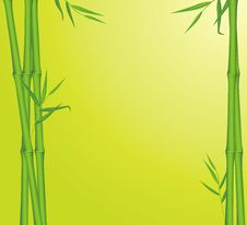 Free Green Bamboo. Background For Card Stock Image - 20431671