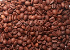 Free Brown Coffee Beans Royalty Free Stock Images - 20431859