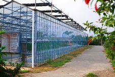 Free Greenhouse Exterior Royalty Free Stock Photos - 20432828