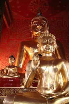 Free Golden Buddha Royalty Free Stock Photo - 20433685