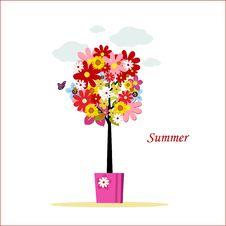 Free Summer Tree Royalty Free Stock Photos - 20434138