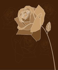 Free Rose Stock Photography - 20434222