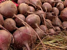 Free Beetroots Harvest Royalty Free Stock Photo - 20435765