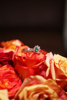 Free Wedding Rings On Bouquet - Roses Royalty Free Stock Images - 20437169