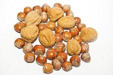 Free Blend Walnuts And Hazelnuts Stock Image - 20437841