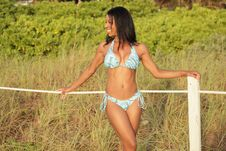 Free Happy Bikini Model Stock Images - 20438424