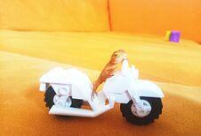 Free A Little Lizard Riding A Lego Motorbike Royalty Free Stock Photos - 204344938