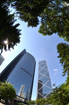 Free Fisheye View Of Financial District In Hong Kong Royalty Free Stock Image - 20440976