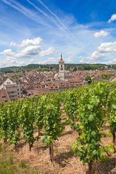 Free Summer In Schaffhausen Stock Photo - 20441590