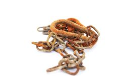 Free Rusty Chain Royalty Free Stock Photo - 20442115