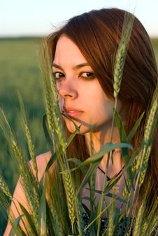 Free Young Woman And Cereal Crops Stock Photo - 20442320