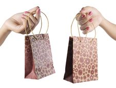 Free Female Hand Holding Shopping Bag Stock Images - 20442884