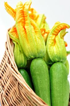 Free Fresh Zucchini Royalty Free Stock Photos - 20443328