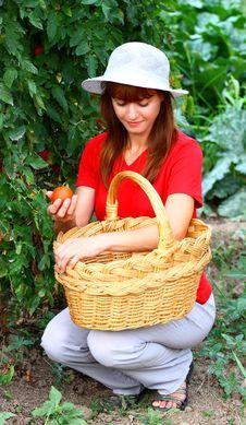Free Woman In A Garden Royalty Free Stock Photos - 20443888