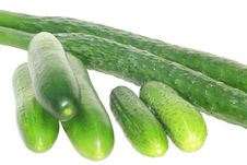 Free Three Sorts Of Cucumber Royalty Free Stock Photography - 20449127