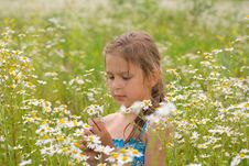 Free Little Girl Picking Flowers Royalty Free Stock Photo - 20449705