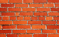Free Brick Wall Royalty Free Stock Images - 20454359