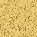 Free Seamless Autumn Leaves Background. Stock Image - 20457971