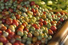 Free Many Tomato Various Market Background Royalty Free Stock Photo - 20453275