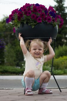 The Small Child With Flowers Stock Image
