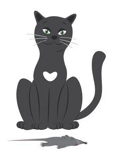 Free Cat Stock Photos - 20453773