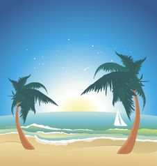 Free Seaside With Palms-night Stock Images - 20454054