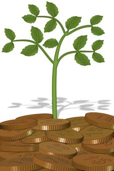 Free Plant And Coins Stock Photography - 20454452