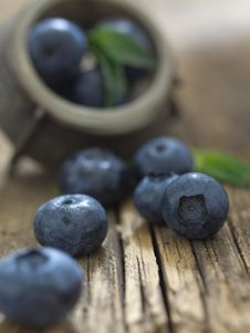 Free Blueberries Royalty Free Stock Photography - 20457137