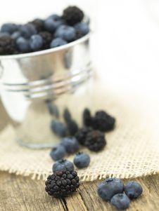 Free Blueberries Royalty Free Stock Photos - 20457278