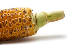 Free Grilled Corn Stock Image - 20459881