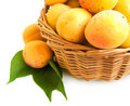 Free Apricots Royalty Free Stock Photography - 20461217