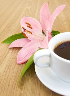 Free Coffee Stock Photos - 20461103