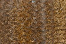 Free Rusty Metal Plate Royalty Free Stock Image - 20462146