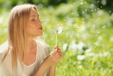 Free Girl Blowing On A Dandelion Stock Photos - 20462393