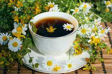 Free Herbal  Tea Stock Photos - 20463153