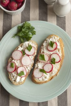Free Bread With Cheese And Radish Stock Photo - 20463400