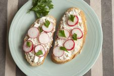 Free Bread With Cheese And Radish Stock Image - 20463411