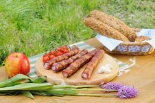 Free Outdoor  Dinner Stock Image - 20463561