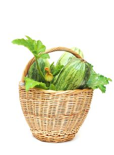 Free Fresh Zucchini Fruits Stock Image - 20463651