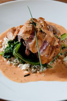 Free Grilled Duck Over Wild Rice Stock Photography - 20467412