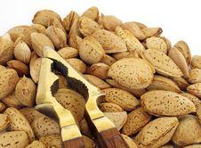 Free Almonds Stock Image - 20469981