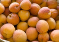 Free Apricots In Basket Stock Photos - 20478113