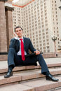 Free Businessman Calling Stock Photos - 20478163